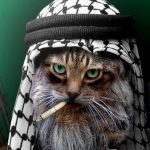 We support islamicat