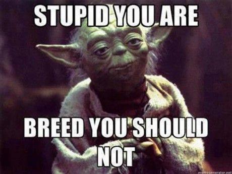 Yoda sez
